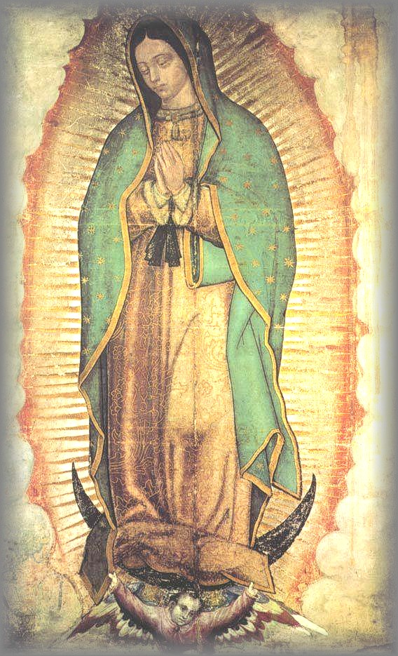 ORIGINAL IMAGE OF OUR LADY: Maguay Cloth - 1531